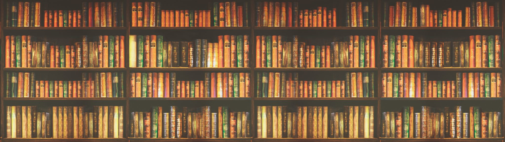 Image of a library bookshelf; courtesy of Shutterstock.